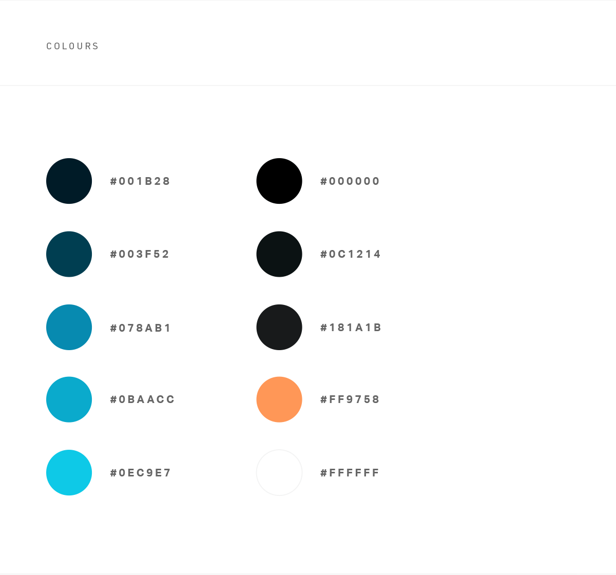 rainmaker-colour